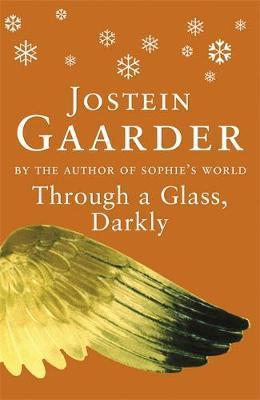 Through A Glass, Darkly by Jostein Gaarder image