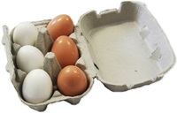 Fun Factory - Wooden Eggs in a Carton