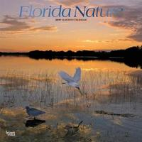 Florida Nature 2019 Square Foil by Inc Browntrout Publishers image