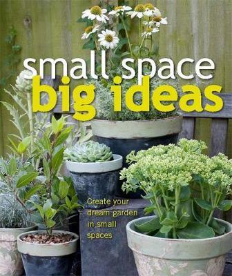 Small Space Big Ideas by DK Australia