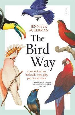 The Bird Way by Jennifer Ackerman