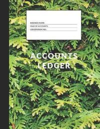 Accounts Ledger by Metta Art