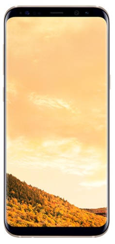 Samsung Galaxy S8+ 64GB - Maple Gold