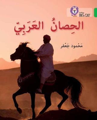 The Arabian Horse by Mahmoud Gaafar