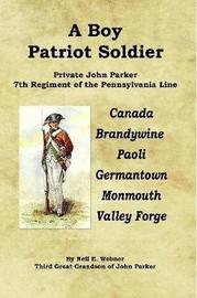 A Boy Patriot Soldier by Neil E. Webner image