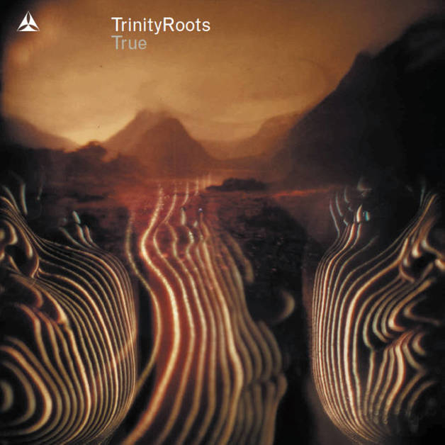 True by Trinity Roots