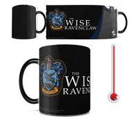 Harry Potter Ravenclaw Robe Morphing Mug (325ml)