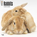 Rabbits 2018 Square Wall Calendar by Inc Browntrout Publishers