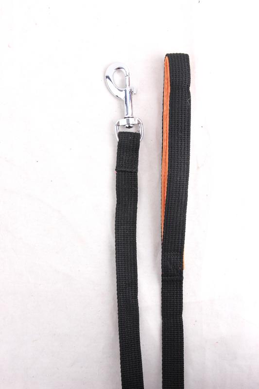 Pawise: Flat Leash with Loop - Black/15m
