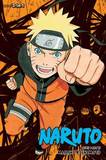 Naruto (3-in-1 Edition), Vol. 13 by Masashi Kishimoto