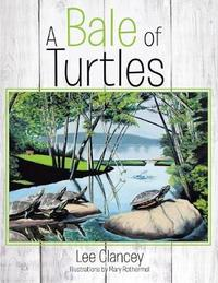 A Bale of Turtles by Lee Clancey