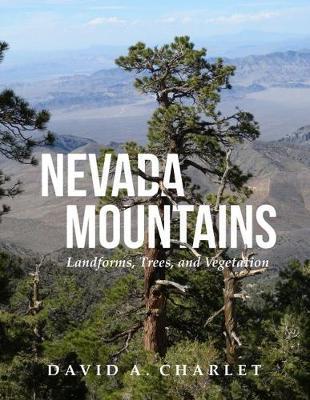 Nevada Mountains by David Alan Charlet