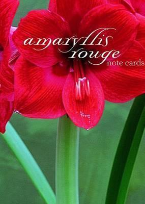 Amaryllis Rouge Note Cards by Starr Ockenga