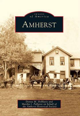 Amherst by Donna M DeBlasio