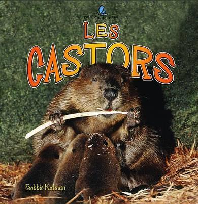 Les Castors by Bobbie Kalman image