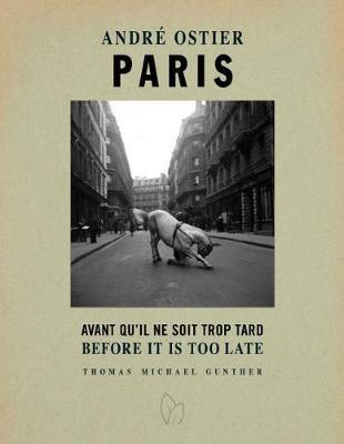 Paris, Before It Is Too Late by Thomas Michael Gunther image