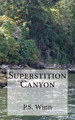 Superstition Canyon by P S Winn