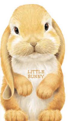 Little Bunny image