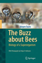 The Buzz about Bees by Jurgen Tautz