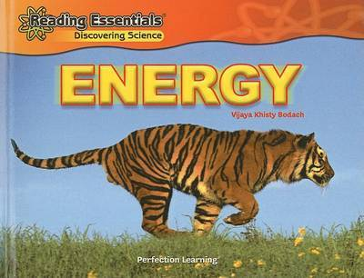 Energy by Vijaya Khisty Bodach image