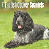 English Cocker Spaniels 2018 Square Wall Calendar