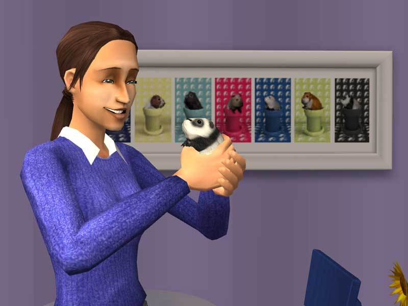 The Sims 2: Pets Expansion Pack DVD for PC Games image