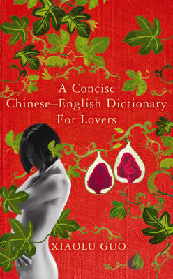 A Concise Chinese-English Dictionary for Lovers, A by Xiaolu Guo image