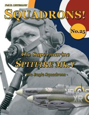 The Supermarine Spitfire Mk. V by Phil H Listemann image
