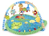 Taggies - Bugs and Hugs Playgym