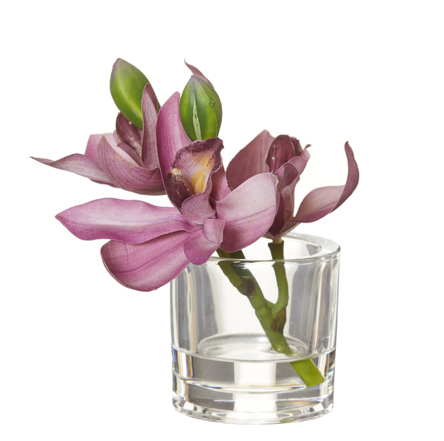 Rogue: Mauve Cymbidium - Glass Vase (15x8x15cm)