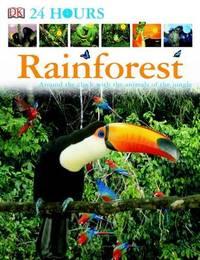 Rainforest image