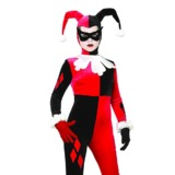 Harley Quinn Costume (Small)