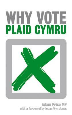 Why Vote Plaid Cymru? by Adam Price image