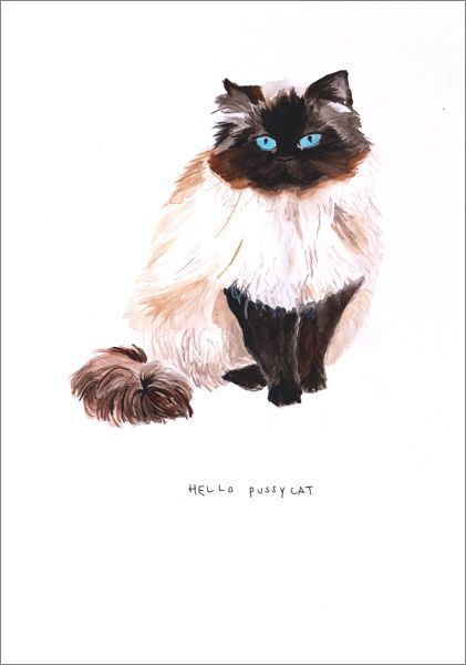 Hello Pussycat Anniversary Love Card