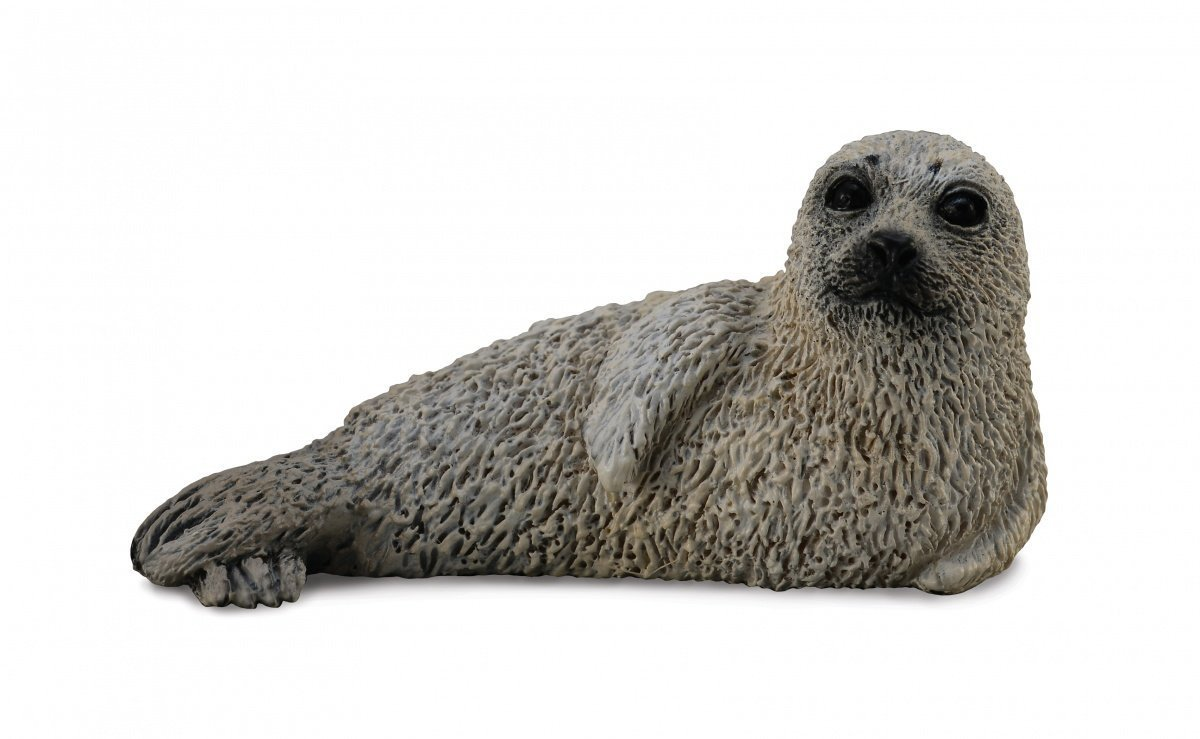 CollectA - Spotted Seal Pup image