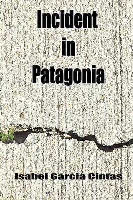 Incident in Patagonia image
