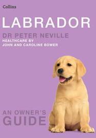 Labrador by Peter Neville image
