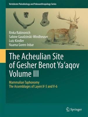 The Acheulian Site of Gesher Benot Ya`aqov Volume III by Rivka Rabinovich