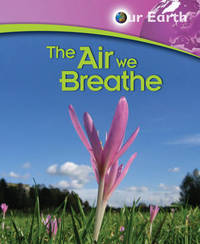 The Air We Breathe by Jen Green image