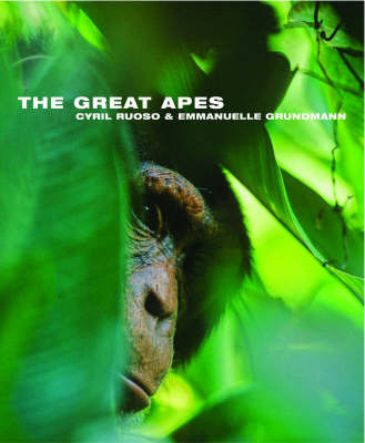 The Great Apes by Cyril Ruoso