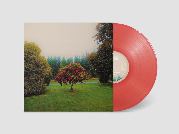 Foothills (Coloured Vinyl) by The Bats