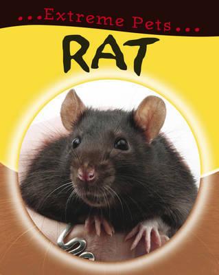 Rat by Deborah Chancellor