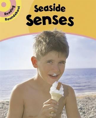 Reading Roundabout: Seaside Senses by Paul Humphrey