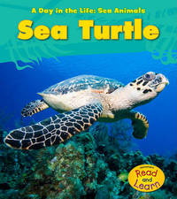Sea Turtle by Louise A Spilsbury