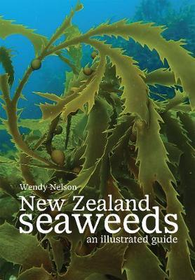 New Zealand Seaweeds by Wendy Nelson