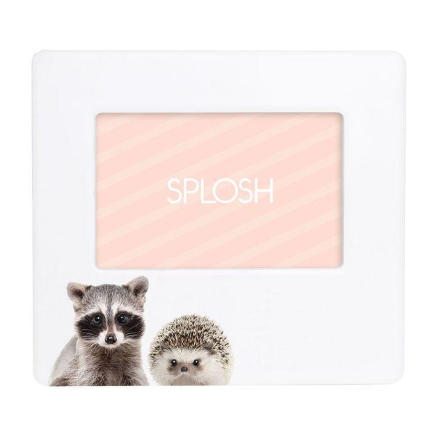 Splosh: Baby Racoon Frame