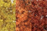 Woodland Scenics Fine Leaf Foliage Fall Mix