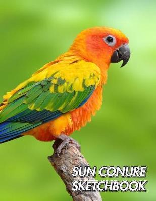 Sun Conure Sketchbook by Notebooks Journals Xlpress image