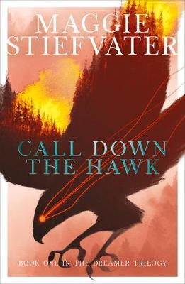 Call Down the Hawk by Maggie Stiefvater image
