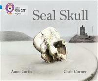Seal Skull by Anne Curtis